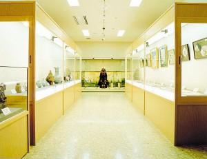 kiyosato-lifelong-study-10
