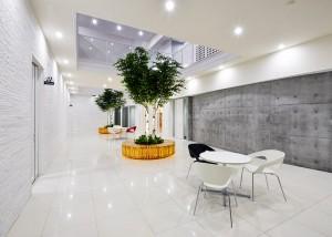 ain-pharmacy-head-office-05